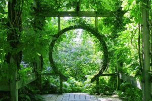 Zen Gateway in Nature